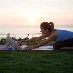 Get in Shape. Top tips for practicing yoga with your dog.