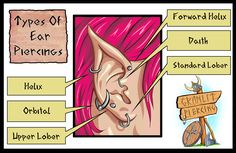 Types Of Ear Piercings by Granlit Artwork: www.facebook.com/Fantasiart.I  More Information: www.facebook.com/granlitpiercing/ /www.instagram.com/granlit/ /twitter.com/Granlit granlit.deviantart.com/ plus.google.com/u/0/+GranlitThunderbeer/posts?hl=el  #piercing #athens #gr #neaionia #piercings #tattoo #granlitpiercing #granlit #thunderbeer #granlitthunderbeer #art #bodyart #body #bodypiercing #fantasy #comic #comicpiercing #comics