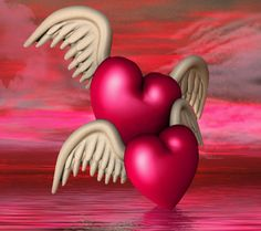 Good Phone Backgrounds, Wallpaper Backgrounds, Iphone Wallpapers, Heart With Wings, I Love Heart, Amazing Dp, Hearts And Roses, Angel Heart, Art Of Love
