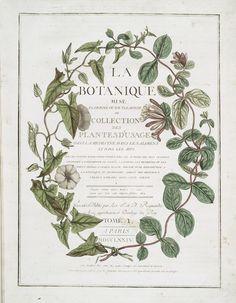 inspiration | botanical wedding invitations