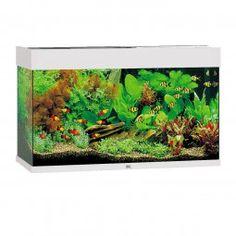 Juwel Rio 125 Süßwasseraquarium. Inkl. Aquarienpumpe, High-Lite® Einsatzleuchte & Leuchtmittel, Innenfilter Bioflow® & Filtermedien sowie Regelheizer.