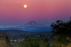 Photography by:Larry. Filz. Near West Linn, Oregon<3