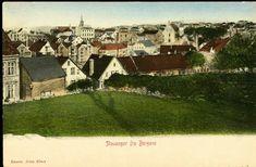 Rogaland fylke Stavanger fra Bergene. Fargekort(kolorert). Oversiktskort med mange hus. Utg Johs Floor tidlig 1900-tallet