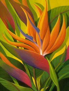 energy birds of paradise flower art - Google Search