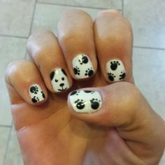 My Dog paw nails