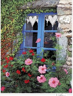 German Cottage Window - love the little heart lace valance...