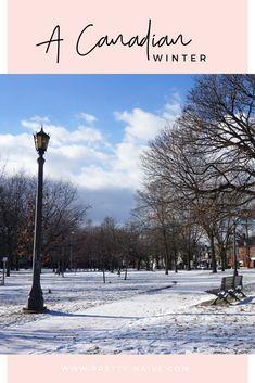 Un hiver canadien | Un petit aperçu du centre-ville de Toronto en plein hiver ⛄un peu plus de trois heures dehors, avec - 10 degrés et un vent piquant mais ça valait le coup!