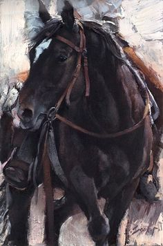 I love painting horses. It is something about the power and the sleekness of their hides. Painting by Jill Soukup Buffalo Painting, Horse Artwork, Cowboy Art, Horse Drawings, Horse Love, Dark Horse, Mundo Animal, Equine Art, Western Art