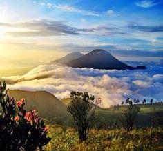 Mt.Sumbing & Mt.Sindiro - Wonosobo