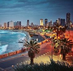 "Tel Aviv (@telaviv) on Instagram: ""Live the life you choose Palestine"