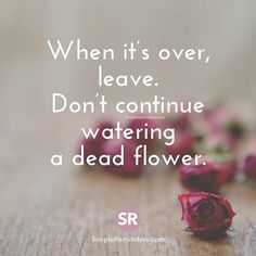 When it's over leave.  #itypewriters #leave #dead #flower #relationship #deadflower #life #lifequotes #over #broken #broke