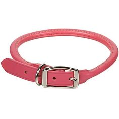 Petco Rolled Leather Dog Collar in Pink