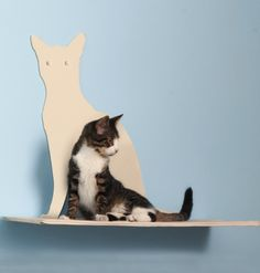 This plush pad is the perfect resting spot for your feline friend!