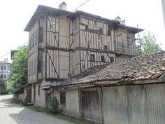 Kastamonu-Yörük Köyü