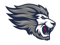 Covenant Day Lions