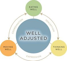 Chiropractic is a triangle of health.  Healthy thoughts, Eliminate toxins, Healthy movements!