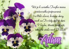 Adam - prianie k meninám December, Plants, Plant, Planets