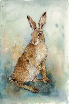 Sitting Hare - Anita Pegler, Pen and wash. Rabbit Drawing, Rabbit Art, Hare Illustration, Illustrations, Watercolor Animals, Watercolor Art, Hare Pictures, Desert Animals, Pen And Wash