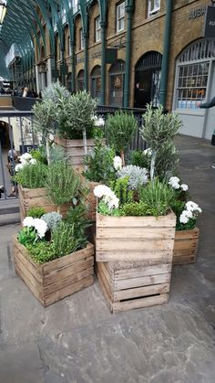 Ideas for apple crate planters at Covent Garden - # apple crate planters . Ideas for apple crate planters at Covent Garden – # apple crate planters # at # for Garden Types, Diy Garden, Garden Planters, Garden Projects, Indoor Garden, Outdoor Gardens, Balcony Garden, Garden Bar, Garden Club