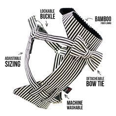 So cute! The Bow-Tie Dog Harness - wish I'd thought of that! #dog