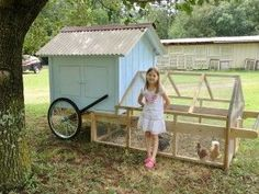 Chicken Tractor-site has instructions-Comments- I would modify my original design by making the back end of the house open up much wider for easier cleaning access while still maintaining the diagonal stability offered by that back wall.