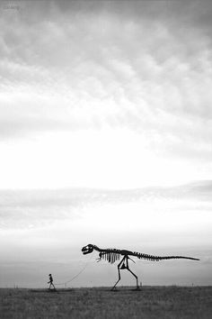T~Rex Skeleton on a leash going for a walk. Jurassic world. Photo D Art, Foto Art, Photocollage, Illustration, To Infinity And Beyond, Jurassic Park, T Rex, Belle Photo, Black And White Photography