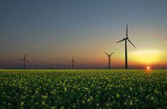 O curso online foi desenvolvido pelo Observatório de Energias Renováveis para a América Latina e Caribe, da Organização das Nações Unidas para o Desenvolvimento Industrial (ONUDI), visando a promov...