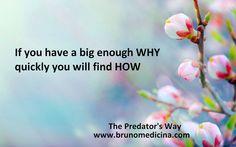 Daca ai un DE CE foarte puternic, vei gasi foarte rapid si CUM - Bruno Medicina              http://www.traininguri.ro/predator-selling/ https://www.facebook.com/bruno.medicina.1?fref=ts http://www.brunomedicina.com/