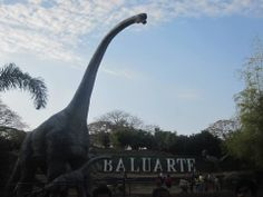 Baluarte Zoo, Vigan, Ilocos Sur, Philippines Visit Ilocos. Find out more at http://q10travelandtours.com.ph/package/ilocos-tour-package-3d2n/