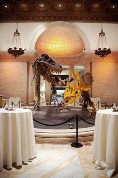 Taxidermy Elephants, Dinosaurs & A Vegan Ethos – Alix & Shawn's Natural History Museum Wedding