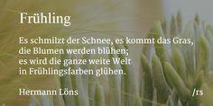 [06.03.2015] Frühling