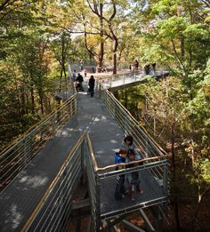 Metcalfe worked with Morris Arboretum to craft a unique treetop experience - a place to learn from nature. The exhibit extends along 450 feet of elevated pathways within the arboretum's forest. Our design balances perceived danger, actual safety, beautiful materials, and real trees. A...
