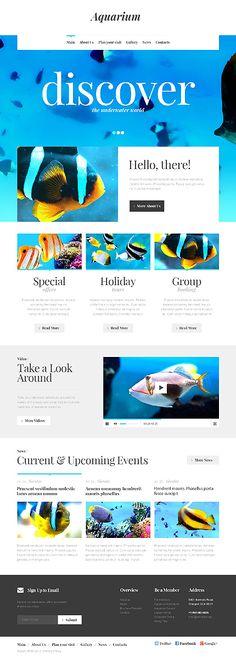 Template 46440 - Aquarium Responsive Website Template