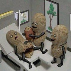 Peanut birth.