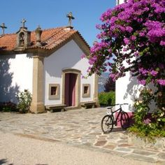 A vintage tour of Portugal's wine country - via @101Holidays blog 18.07.2012 | I love how travel can blast away preconceptions – a recent trip to experience the wines, food and quintas of Porto and the Douro Valley has done exactly that... #portugal Photo: Quinta Nova