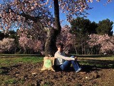 spring is coming! Llega la primavera a la Península Ibérica, la encontramos en La quinta de los Molinos, un paque agrícola lleno de Almendros, los primeros que florecen.