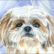 Judith Stein Watercolors - Dogs