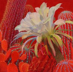 Contemporary Cacti  Oil Painting Cactus Painting   Bold Colors  SHARON WEISER