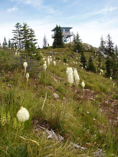 Salmo Lookout on the Pacific Northwest Trail in Colville National Forest