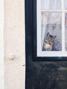 Lissabon-vinkkejä instassa: #vdtravelguide - visual diary | Lily.fi
