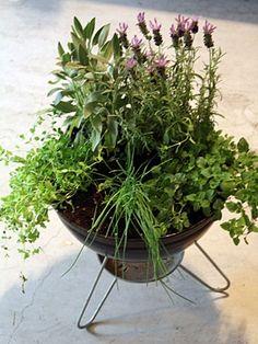 Container Herb Garden: How to Turn a Dingy Old BBQ into an Herb Container Garden Container Herb Garden, Herb Planters, Container Plants, Bbq Stand, Gardening For Beginners, Dream Garden, Garden Inspiration, Vegetable Garden, Indoor Plants