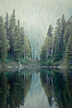 Washington State, so beautiful!
