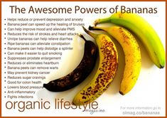 Bananas are relatively low in calories and high in dietary fiber, with an average banana containing about 100 calories. Bananas contain pectin… Banana Health Benefits, Matcha Benefits, Lemon Benefits, Benefits Of Coconut Oil, Natural Cures, Natural Health, Tomato Nutrition, Nutrition Tips, Health Tips