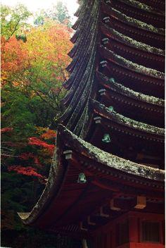 Tanzan Shrine, Nara, Japan 談山神社 奈良