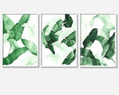 20 x 30 Beverly IV Tropical Banana Green Palm Leaves by THEAESTATE