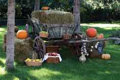 Culinary autumn #harvestday Harvest Day, Pumpkin, Events, Autumn, Texture, Crafts, Surface Finish, Pumpkins, Manualidades