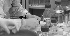 Si terrà a Udine da mercoledì 12 (apertura alle 16.30) a sabato 15 settembre presso la Fiera di Udine, organizzato dai patologi generali del dipartimento di Scienze mediche e biologiche dell'Università di Udine, il Primo Convegno congiunto dell'area di patologia e diagnostica di laboratorio, che unisce il XXXI Meeting della Società di Patologia e Medicina traslazionale (SIPMeT) e il LXII Congresso dell'Associazione Italiana di Patologia Clinica e Medicina Molecolare (AIPaCMeM). I