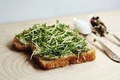 everything is poetry: simplest cheering sandwich
