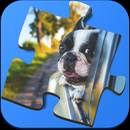 Download Super Jigsaws Windows:  Super Jigsaws Windows V 1.1 for Android 4.0.3+ The BEST jigsaw puzzle games available! Super Jigsaws Windows features a collection of amazing photographs of, yes, windows! Challenge yourself to a game and enjoy a new perspective on life. Windows are something we take for granted, but these...  #Apps #androidgame ##PuzzlePups  ##Board