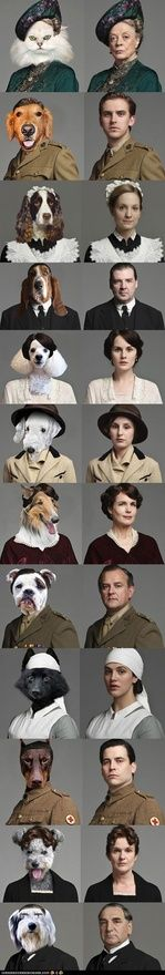 the cast of Downton Abby as cats and dogs-spot on. movies
